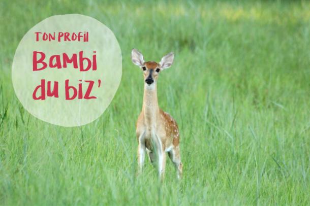 Les résultats du test – Ton profil : Bambi du biz'